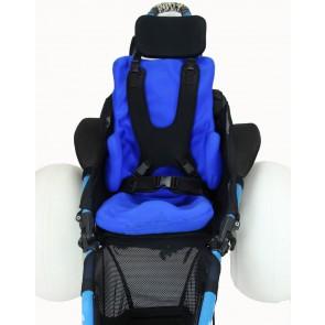 Full Seat Vacuum Insert in Hippocampe
