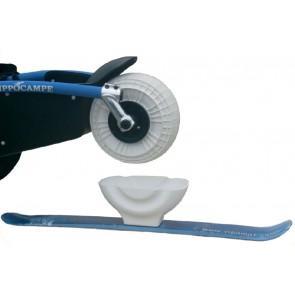 Front Ski for Hippocampe