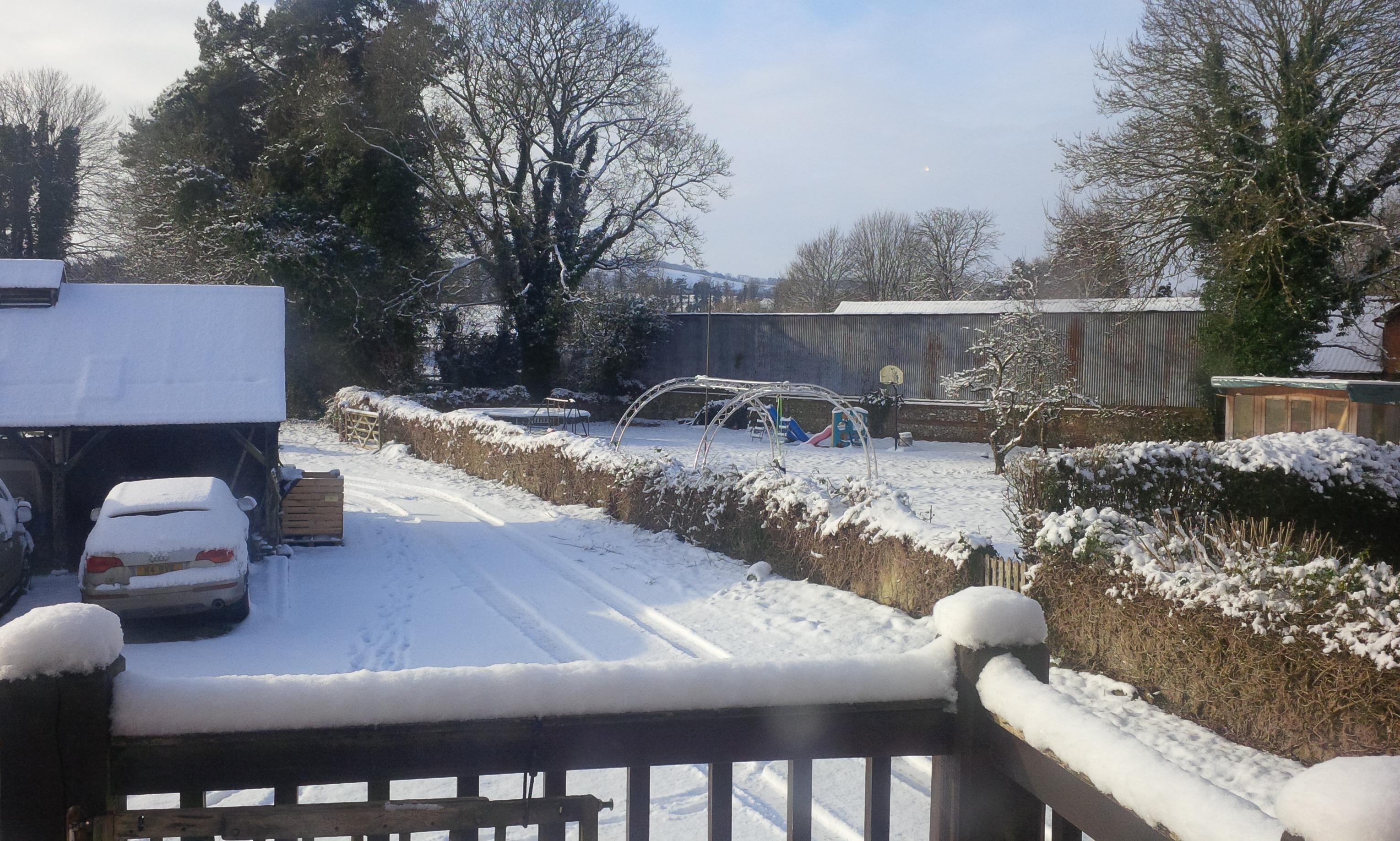 Delichon's premises covered in snow