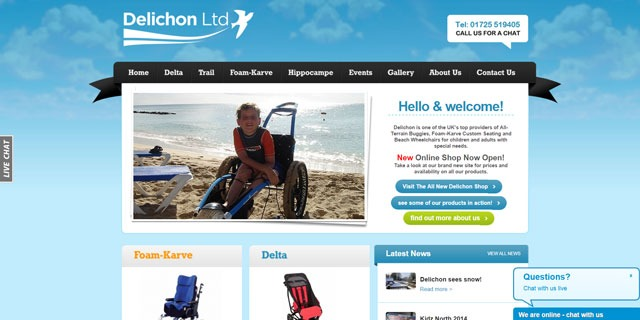 picture of the old delichon website